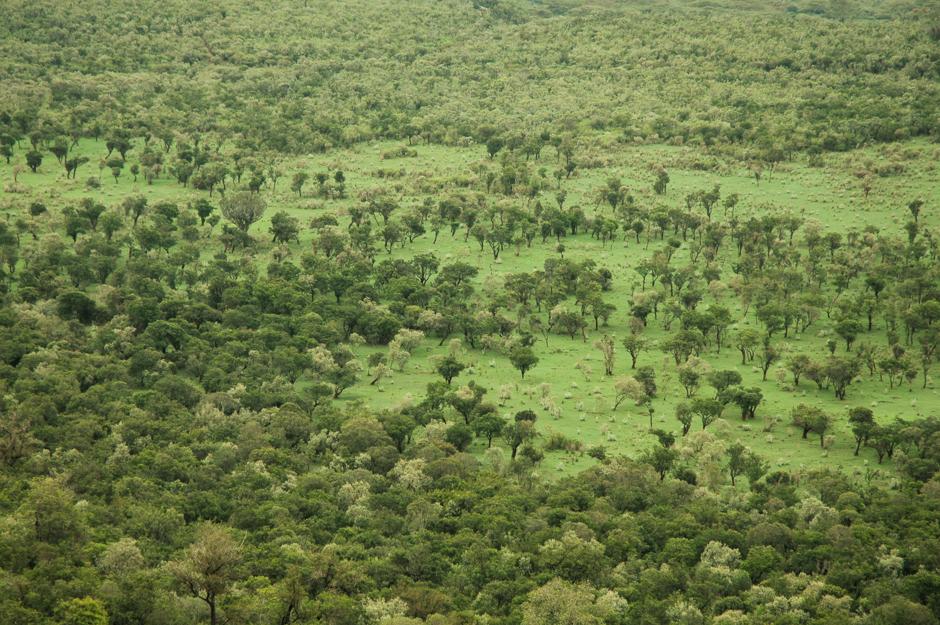 TamaraZidar_Africa10